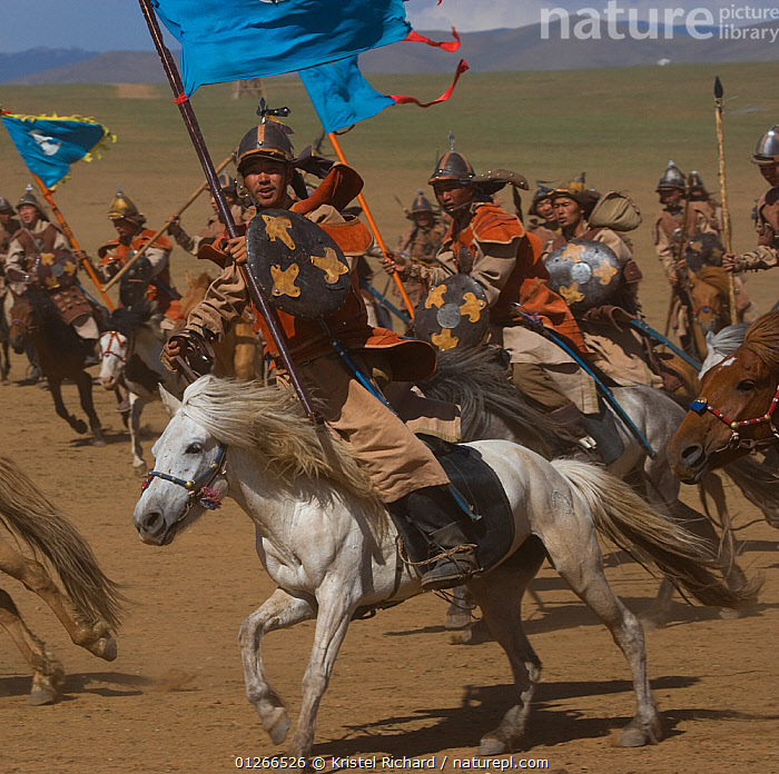 Re-enactement of an attack by the mounted armies of Genghis Khan (emperor of the Mongol Empire) during the Genghis Khan Show, in Ulaanbaatar, Mongolia. The horses are Mongolian horses. july 2007  ,  ARMY,ASIA,BAATOR,CAVALRY,FIGHT,FIGHTING,FLAGS,GALLOPING,GROUPS,HISTORICAL,HORSE,HORSES,LANDSCAPES,MONGOLIA,PEOPLE,RIDING,TRADITIONAL,ULAAN,Aggression  ,  Kristel Richard