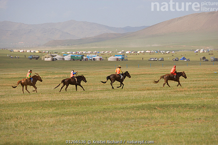 Four young jockeys mounted on their Mongolian horse, race in the horse race of the national Naadam festival, held from July 11 � 13; near Ulaanbaatar, Mongolia. 2007  ,  ASIA,CHILDREN,COMPETITION,GALLOPING,HORSE,HORSES,LANDSCAPES,MONGOLIA,PEOPLE,RACING,RIDING,RUNNING  ,  Kristel Richard