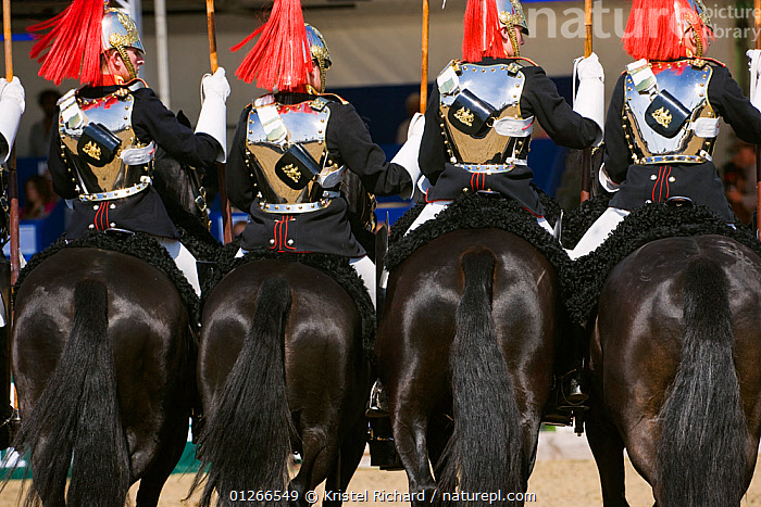 The Household Cavalry, dressed in official uniforms, parade in front of the Queen, during the Royal Windsor Horse Show, Windsor, Berkshire, England, UK. May 2008  ,  ARMY,BOTTOMS,COSTUME,DOMESTIC HORSE ,EQUUS CABALLUS,EUROPE,FOUR,HORSE,HORSES,PEOPLE,RED,RIDING,ROYAL,SOLDIERS,TAILS,TRADITIONAL,UK, United Kingdom  ,  Kristel Richard
