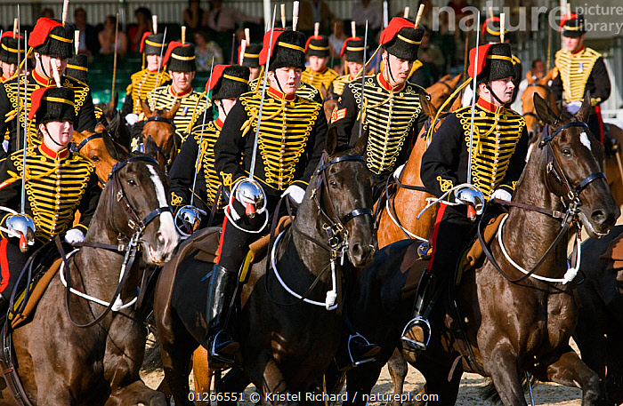 The King's Troops, Royal Horse Artillery, mounted on Irish Draft horses and dressed in official uniforms, parade in front of the Queen, during the Royal Windsor Horse Show, Windsor, England, UK. May 2008  ,  ARMY,CEREMONY,CITIES,COSTUME,DOMESTIC HORSE ,EQUUS CABALLUS,EUROPE,GROUPS,HORSE,HORSES,PEOPLE,SOLDIER,SOLDIERS,TRADITIONAL,UK, United Kingdom  ,  Kristel Richard