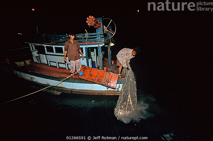 Hauling in net on fishing dragger at night,  Sihanoukville, Cambodia / Kampuchea, June 2008  ,  ASIA,BOATS,CAMBODIA,COMMERCIAL,FISH,FISHERIES,FISHING,FISHING BOATS,INDO PACIFIC,MARINE,NIGHT,PEOPLE,SOUTH-EAST-ASIA  ,  Jeff Rotman