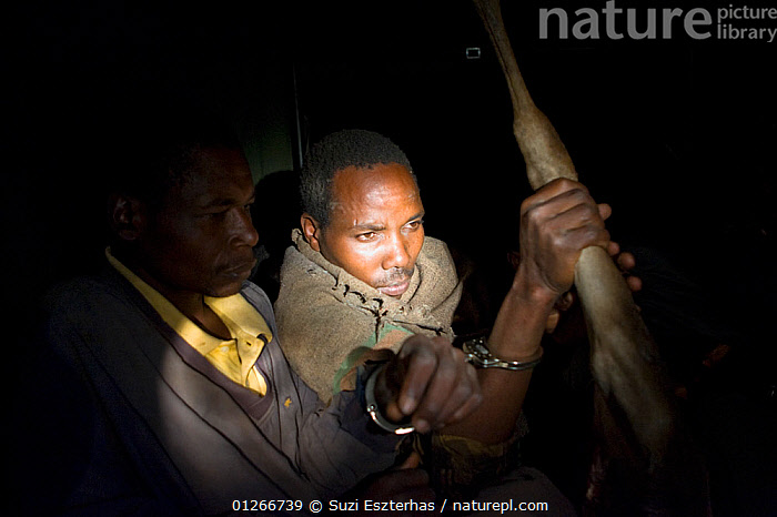 Poachers apprehended by anti-poaching team during night ambush, poachers found with wildebeest and thomson's gazelle meat, Serengeti National Park, Tanzania, August 2007  ,  ARTIODACTYLA,CONSERVATION,DEATH,EAST AFRICA,ILLEGAL,LIGHT,MAMMALS,NIGHT,NP,PEOPLE,POACHERS,POACHING,RANGERS,RESERVE,WARDENS,National Park,,Serengeti National Park, UNESCO World Heritage Site,  ,  Suzi Eszterhas