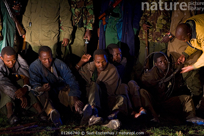 Poachers apprehended by anti-poaching team during night ambush, poachers found with wildebeest and thomson's gazelle meat, Serengeti National Park, Tanzania, August 2007  ,  ARTIODACTYLA,CONSERVATION,EAST AFRICA,GROUPS,GUNS,ILLEGAL,MAMMALS,NIGHT,NP,PEOPLE,POACHERS,POACHING,RANGERS,RESERVE,SNARES,WARDENS,National Park,,Serengeti National Park, UNESCO World Heritage Site,  ,  Suzi Eszterhas