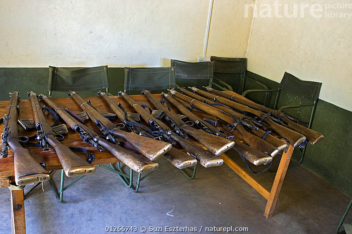 Rifles belonging to rangers of the Mara Conservancy