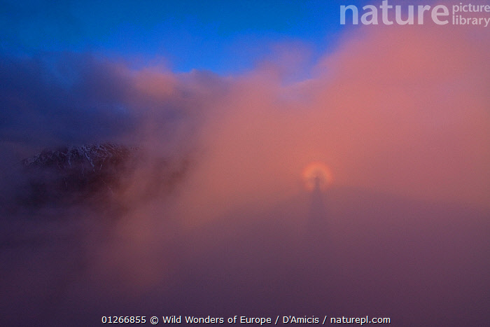 Brocken spectre phenomenon on clouds at sunset, High Tatras, Carpathian Mountains, Slovakia, June 2009  ,  BRUNO D'AMICIS,CLOUDS,EASTERN EUROPE,EUROPE,PINK,SHADOWS,SKY,SLOVAKIA,WWE,Weather  ,  Wild Wonders of Europe / D'Amicis