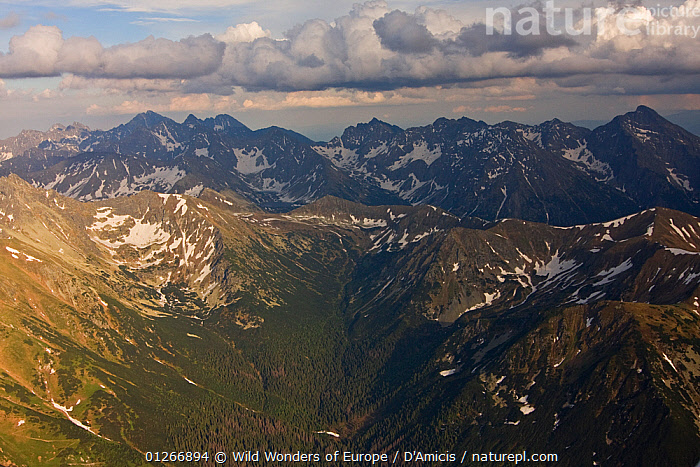 Aerial view of the end of Ticha valley and the High Tatras with Mount Krivan (2,495m) on the right and Mount Gerlach (2,655m) in the background, Western Tatras, Carpathian Mountains, Slovakia, June 2009  ,  AERIALS,BRUNO D'AMICIS,EASTERN EUROPE,EUROPE,LANDSCAPES,MOUNTAINS,SLOVAKIA,WWE  ,  Wild Wonders of Europe / D'Amicis