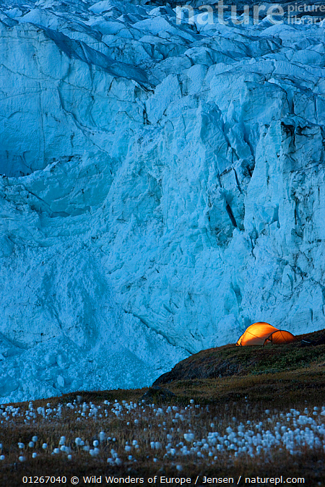 Tent at night next to Russell Glacier, Greenland, August 2009  ,  ARCTIC,BLUE,EUROPE,GLACIERS,GREENLAND,ICE,KAI JENSEN,LANDSCAPES,TENTS,VERTICAL,WWE,Geology  ,  Wild Wonders of Europe / Jensen