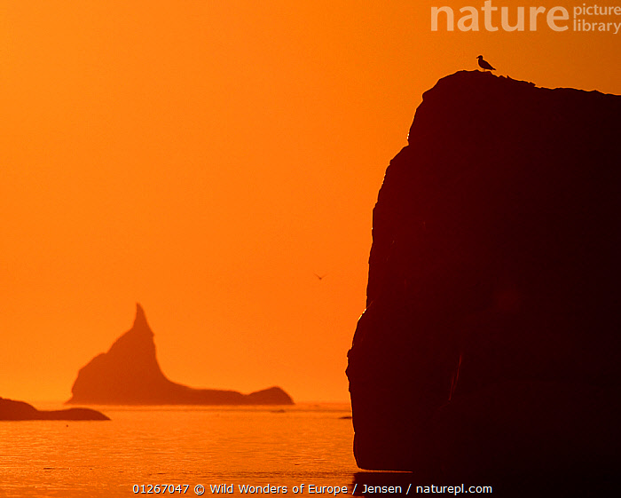 Icebergs silhouetted at sunset, Disko Bay, Greenland, August 2009  ,  ARCTIC,ATMOSPHERIC,BIRDS,DISCOBAY,EUROPE,GREENLAND,ICEBERGS,KAI JENSEN,LANDSCAPES,ORANGE,SILHOUETTES,SUNSET,WWE  ,  Wild Wonders of Europe / Jensen