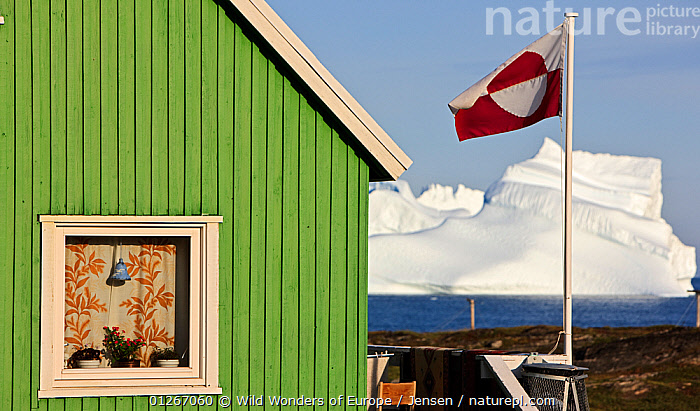 House in Qeqertarsuaq with the national flag flying, iceberg in distance, Qeqertarsuaq, Greenland, August 2009  ,  ARCTIC,BUILDINGS,COASTS,EUROPE,FLAGS,GREENLAND,ICEBERGS,KAI JENSEN,LANDSCAPES,WWE  ,  Wild Wonders of Europe / Jensen