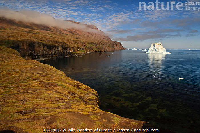 Icebergs just off the coast with low clouds over the cliffs, Qeqertarsuaq, Disko Bay, Greenland, August 2009  ,  ARCTIC,CLIFFS,CLOUDS,COASTS,DISCOBAY,EUROPE,GREENLAND,ICEBERGS,KAI JENSEN,LANDSCAPES,WWE,Geology,Weather  ,  Wild Wonders of Europe / Jensen