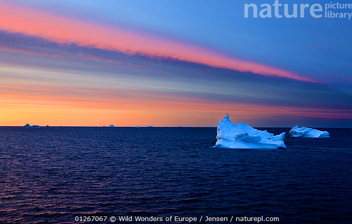 Icebergs at dusk, Qeqertarsuaq, Disko Bay, Greenland, August 2009  ,  ARCTIC,ATMOSPHERIC,COLOURFUL,DISCOBAY,DUSK,EUROPE,GREENLAND,ICEBERGS,KAI JENSEN,LANDSCAPES,SUNSET,WWE  ,  Wild Wonders of Europe / Jensen
