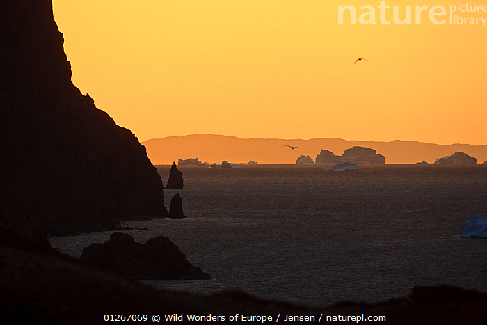 Coast at sunset with icebergs on the sea, Greenland, August 2009  ,  ARCTIC,ATMOSPHERIC,COASTS,EUROPE,GREENLAND,ICEBERGS,KAI JENSEN,LANDSCAPES,ORANGE,SILHOUETTES,WWE  ,  Wild Wonders of Europe / Jensen