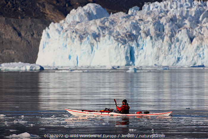 Man kayaking in front of the Eqi glacier, Greenland, August 2009  ,  ARCTIC,BOATS,EUROPE,GLACIERS,GREENLAND,ICE,KAI JENSEN,KAYAK,KAYAKING,LANDSCAPES,LEISURE,PEOPLE,REFLECTIONS,WATER,WWE,Geology,SPORTS, WATERSPORTS  ,  Wild Wonders of Europe / Jensen