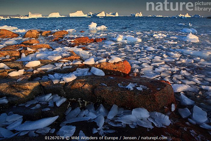 Ice on the coast with icebergs in the distance, Saqqaq, Greenland, August 2009  ,  ARCTIC,COASTS,EUROPE,GREENLAND,ICE,ICEBERGS,KAI JENSEN,LANDSCAPES,SEA,WWE  ,  Wild Wonders of Europe / Jensen