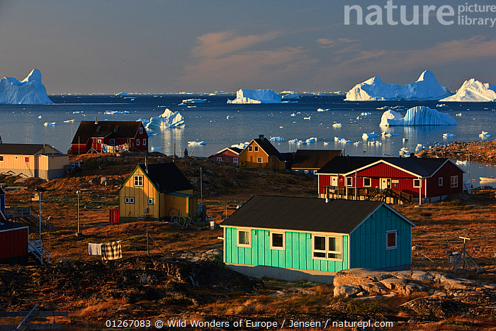 Coastal settlement houses, Saqqaq, Greenland, August 2009  ,  ARCTIC,BUILDINGS,EUROPE,GREENLAND,ICEBERGS,KAI JENSEN,LANDSCAPES,VILLAGES,WWE  ,  Wild Wonders of Europe / Jensen