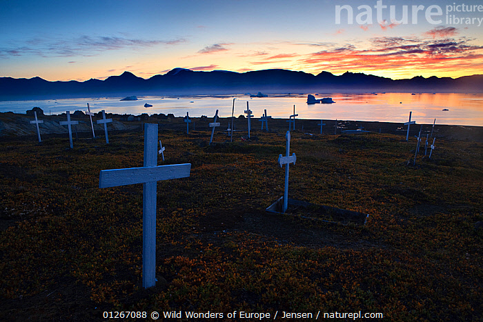 Graveyard at sunrise, Qullissat, Greenland, August 2009  ,  ARCTIC,CHURCHYARD,COASTS,CROSSES,EUROPE,GREENLAND,ICEBERGS,KAI JENSEN,LANDSCAPES,MOUNTAINS,SILHOUETTES,SUNRISE,WWE  ,  Wild Wonders of Europe / Jensen