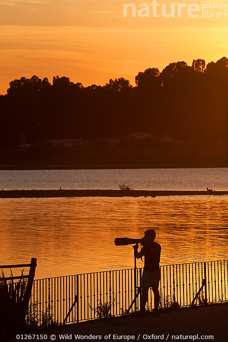 Person silhouetted taking photographs, Do�ana National & Natural Park, Huelva Province, Andalusia, Spain, May 2009  ,  EUROPE,NP,ORANGE,PEOPLE,PETE OXFORD,PHOTOGRAPHY,RESERVE,SILHOUETTES,SPAIN,VERTICAL,WATER,WETLANDS,WWE,National Park  ,  Wild Wonders of Europe / Oxford