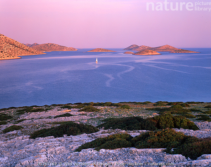 View from Ravni Zakan Island with a small private sailboat on the sea, Kornati National Park, Croatia, May 2009  ,  ADRIATIC SEA,BOATS,COASTS,CROATIA,EASTERN EUROPE,EUROPE,ISLANDS,LANDSCAPES,MEDITERRANEAN,NP,RESERVE,VERENA POPP HACKNER,WWE,National Park  ,  Wild Wonders of Europe / Popp-Hackner