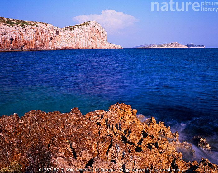 Steep cliffs of Mana Island, Kornati National Park, Croatia, May 2009  ,  ADRIATIC SEA,CLIFFS,COASTS,CROATIA,EASTERN EUROPE,EUROPE,ISLANDS,LANDSCAPES,MEDITERRANEAN,NP,RESERVE,ROCKS,VERENA POPP HACKNER,WWE,Geology,National Park  ,  Wild Wonders of Europe / Popp-Hackner