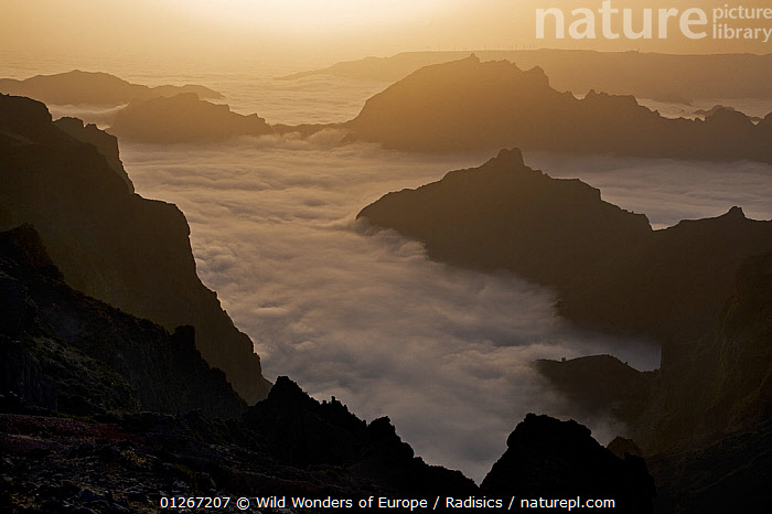 View from Pico do Arieiro of mountains surrounded by low clouds, Madeira, March 2009  ,  CLOUDS,EUROPE,LANDSCAPES,MILAN RADISICS,MIST,MOUNTAINS,PORTUGAL,SILHOUETTES,WWE,Weather  ,  Wild Wonders of Europe / Radisics