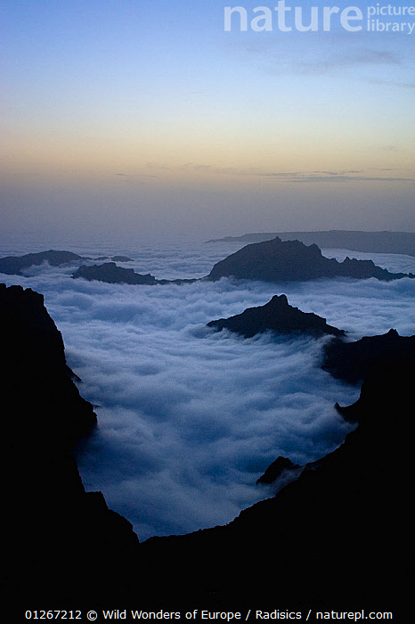 Moutains surrounded by low lying clouds, viewed from Pico do Arieiro, at dusk, Madeira, March 2009  ,  CLOUDS,DUSK,EUROPE,LANDSCAPES,MILAN RADISICS,MOUNTAINS,PORTUGAL,ROCKS,VERTICAL,WWE,Weather  ,  Wild Wonders of Europe / Radisics