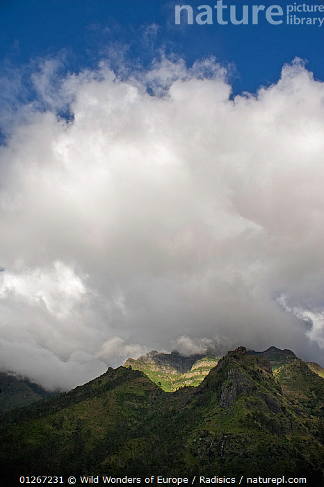 Pico de Encumeada disappearing into clouds, Madeira, March 2009  ,  CLOUDS,EUROPE,LANDSCAPES,MILAN RADISICS,MOUNTAINS,PORTUGAL,ROCKS,VERTICAL,WWE,Weather  ,  Wild Wonders of Europe / Radisics