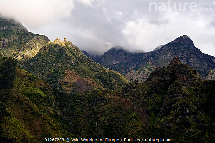 Pico da Encumeada with clouds covering some peaks, Madeira, March 2009  ,  CLOUDS,EUROPE,LANDSCAPES,MILAN RADISICS,MOUNTAINS,PORTUGAL,WWE,Weather  ,  Wild Wonders of Europe / Radisics