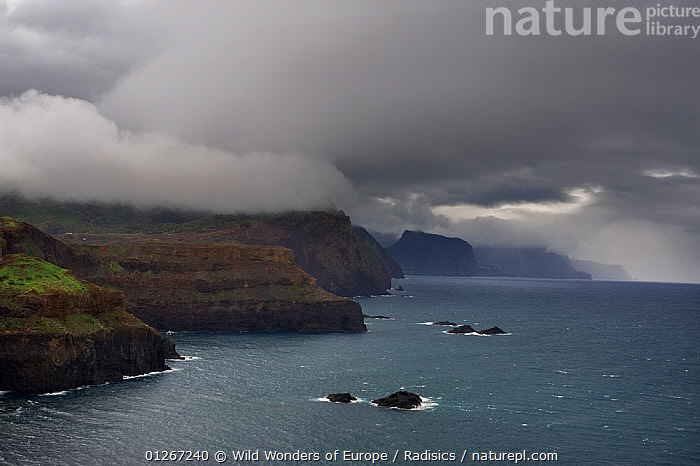 Ponta de Sao Lourenco costline with top of cliffs in clouds, Madeira, March 2009  ,  CLOUDS,COASTS,EUROPE,LANDSCAPES,MILAN RADISICS,PORTUGAL,ROCKS,WWE,Weather  ,  Wild Wonders of Europe / Radisics