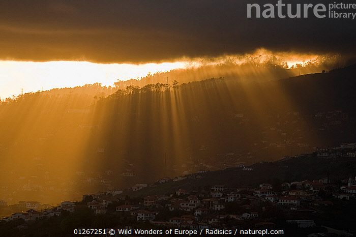 Sunset with rays of light coming through a gap in clouds, Funchal, Madeira, March 2009  ,  ATMOSPHERIC,CITIES,CLOUDS,EUROPE,LANDSCAPES,MILAN RADISICS,PORTUGAL,SILHOUETTES,SUNSET,TREES,WWE,Weather,PLANTS  ,  Wild Wonders of Europe / Radisics
