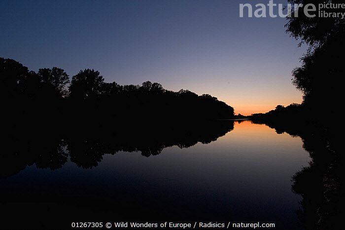 Tisza River at dusk, Hungary, June 2009  ,  BLUE,DUSK,EASTERN EUROPE,EUROPE,HUNGARY,LANDSCAPES,MILAN RADISICS,REFLECTIONS,RIVERS,SILHOUETTES,TREES,WWE,PLANTS  ,  Wild Wonders of Europe / Radisics