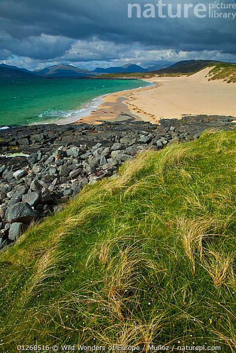 Scarista Beach, Sound of Taransay, South Harris, Outer Hebrides, Scotland, UK, June 2009, BEACHES,EUROPE,JUAN CARLOS MU�OZ,LANDSCAPES,MOUNTAINS,ROCKS,UK,VERTICAL,WWE,SCOTLAND, United Kingdom, Wild Wonders of Europe / Muñoz