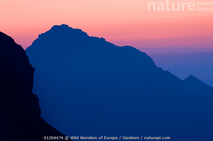 Mountains silhouetted at dawn from near the Pf�lzer H�tte, Liechtenstein, June 2009  ,  ALPINE,ALPS,ATMOSPHERIC,BLUE,DAWN,EDWIN GIESBERS,EUROPE,LANDSCAPES,LIECHTENSTEIN,MOUNTAINS,PINK,SILHOUETTES,SUNRISE,WWE  ,  Wild Wonders of Europe / Giesbers