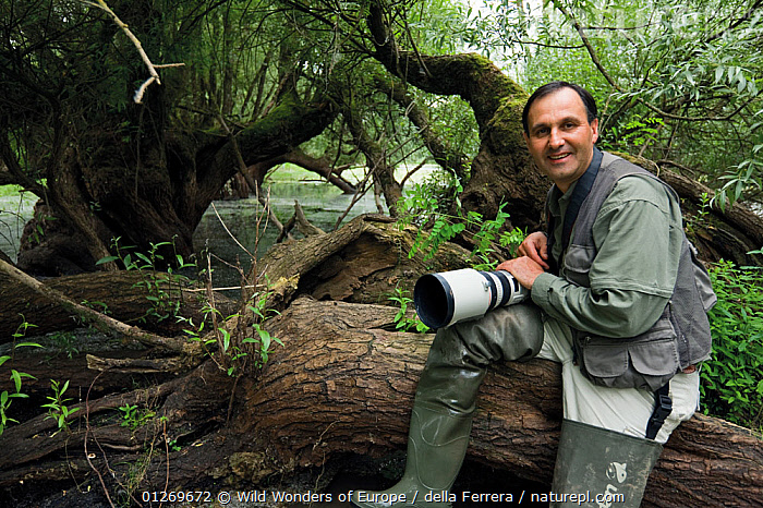 Photographer, Elio della Ferrera, holding camera sitting on fallen tree, in an oxbow of the Sava river flooded area, Lonjsko Polje Nature Park, on the Croatia Bosnia and Herzegovina border, June 2009  ,  BOSNIA AND HERZEGOVINA,CAMERAS,CROATIA,EASTERN EUROPE,ELIO DELLA FERRERA,EUROPE,PEOPLE,PORTRAITS,RESERVE,SALICACEAE,SALIX,TREES,WETLANDS,WILLOW,WWE,PLANTS  ,  Wild Wonders of Europe / della Ferrera