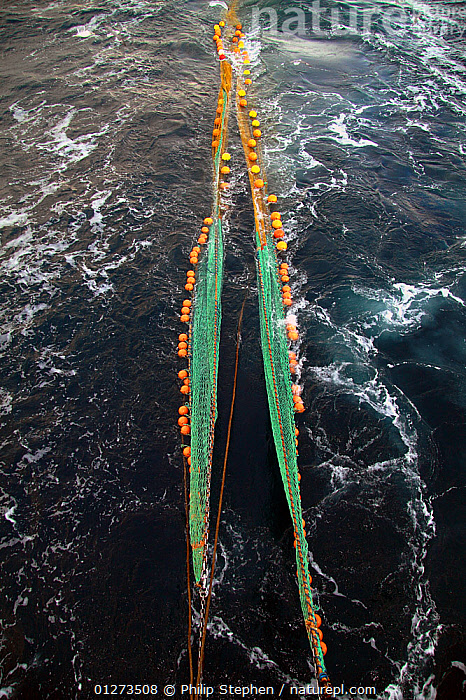 Trawl net being cast into the water from a trawler on the North Sea. January 2010.  ,  EQUIPMENT,EUROPE,FISHING BOATS,NETS,PROCEDURES,TRAWLERS,VERTICAL,BOATS, WORKING-BOATS  ,  Philip Stephen
