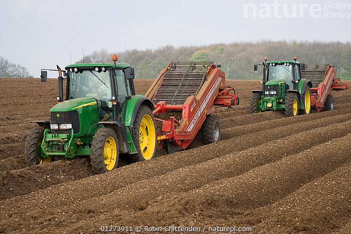 Two tractors planting potatoes, Saxby Wolds, Lincolnshire, April 2009  ,  AGRICULTURE,CROPS,EUROPE,LANDSCAPES,UK,VEGETABLES, United Kingdom  ,  Robin Chittenden