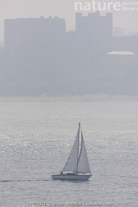 Yacht sailing between Farne Islands and the mainland, Bamburgh Castle in background, Northumberland, UK  ,  BOATS,BUILDINGS,CASTLES,COASTS,EUROPE,LANDSCAPES,SEA,UK,VERTICAL,ENGLAND, United Kingdom  ,  David Woodfall