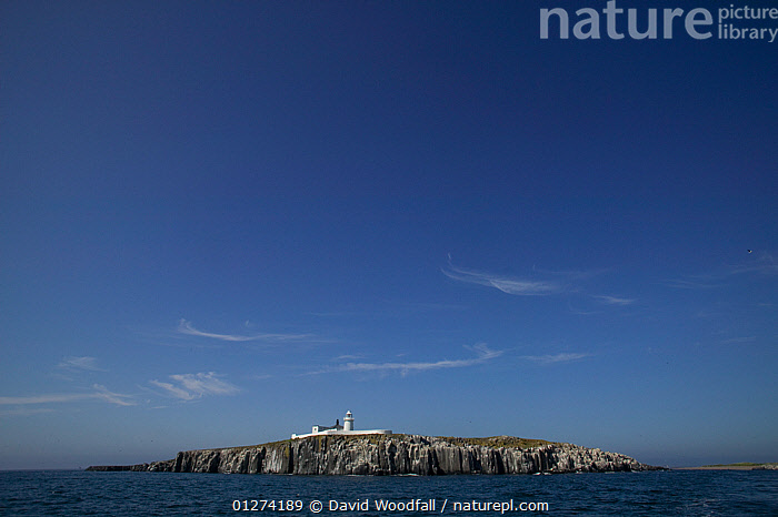 Inner Farne with lighthouse, Farne Islands, Northumberland, UK, June 2009  ,  CLIFFS,COASTS,EUROPE,ISLANDS,LANDSCAPES,LIGHTHOUSES,UK,Geology,BUILDINGS ,ENGLAND, United Kingdom  ,  David Woodfall