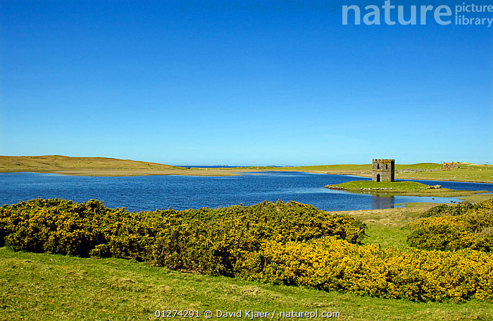 Scolpaig Tower, South Uist, Outer Hebrides, Scotland, May 2009  ,  EUROPE,LANDSCAPES,TOWERS,UK,SCOTLAND, United Kingdom  ,  David Kjaer