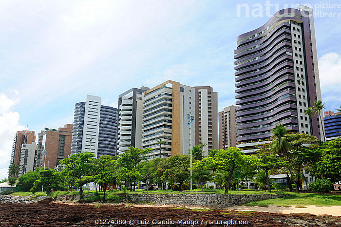 Buildings of Beira Mar Avenue on the sea shore of Fortaleza city, Ceara� State, Northeastern Brazil. March 2009  ,  BRAZIL,BUILDINGS,CITIES,COASTS,SKYSCRAPERS,SOUTH AMERICA,SOUTH-AMERICA  ,  Luiz Claudio Marigo
