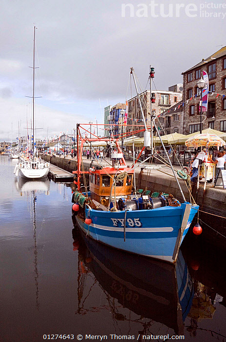 Fishing boat moored alongside quay in the historic Barbican, Plymouth, Devon. August 2009.  ,  CITIES,COASTS,EUROPE,FISHING BOATS,FRONT VIEWS,HARBOURS,HISTORICAL,LANDSCAPES,REFLECTIONS,TRAWLERS,UK,VERTICAL,BOATS, WORKING-BOATS , United Kingdom  ,  Merryn Thomas