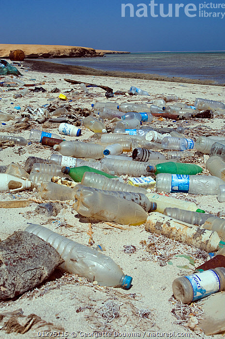 Plastic bottles and other debris washed up on beach. Gubal Island, Egypt, Red Sea.  ,  CONSERVATION,BEACHES,COASTAL,EGYPT,ENVIRONMENTAL,GLASS,LANDSCAPES,MARINE,NORTH AFRICA,PLASTICS,POLLUTION,RED SEA,TROPICAL,VERTICAL,NORTH-AFRICA,Africa  ,  Georgette Douwma
