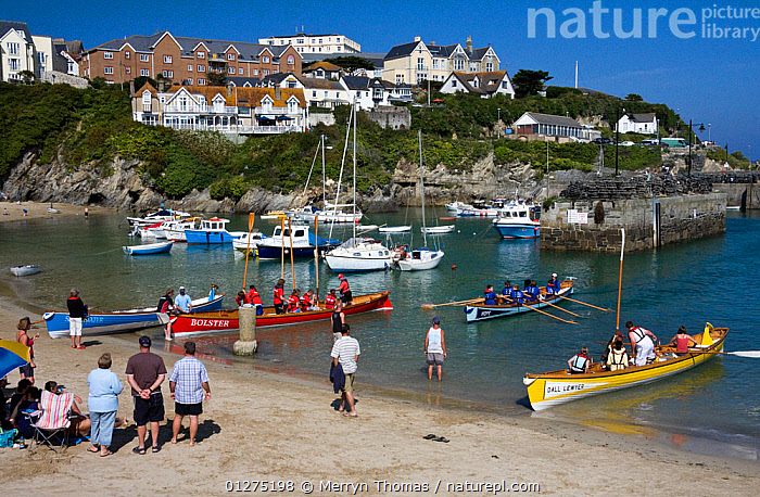 Youth races at Newquay County Gig Championships, Cornwall. Old Harbour, September 2009.  ,  BEACHES,COASTS,EUROPE,EVENTS,GIGS,HARBOURS,PEOPLE,RACES,UK,BOATS, OPEN-BOATS  , United Kingdom  ,  Merryn Thomas