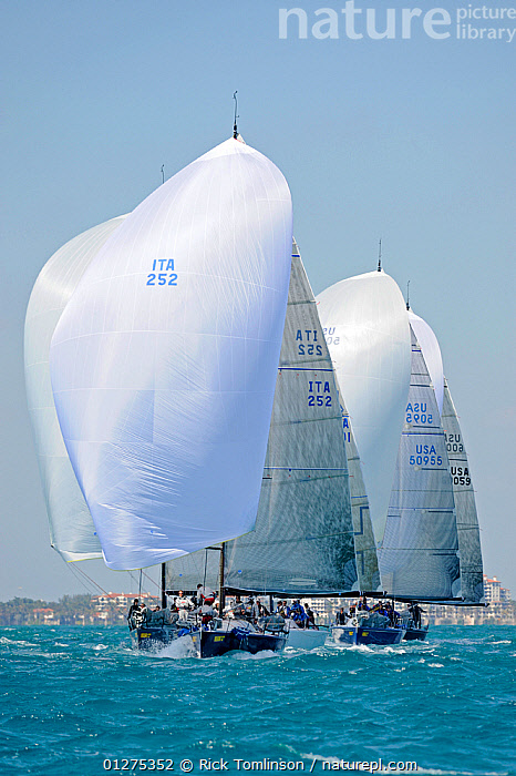 """Farr 40 fleet downwind with """"Fiamma"""" (ITA) ahead, Miami Grand Prix, Florida, USA. March 2010.  ,  COASTS,FARRS,FLEETS,FRONT VIEWS,NORTH AMERICA,RACING,SAILING BOATS,SPINNAKERS,USA,VERTICAL,YACHTS,BOATS,SAILING-BOATS,SAILS ,core collection xtwox  ,  Rick Tomlinson"""