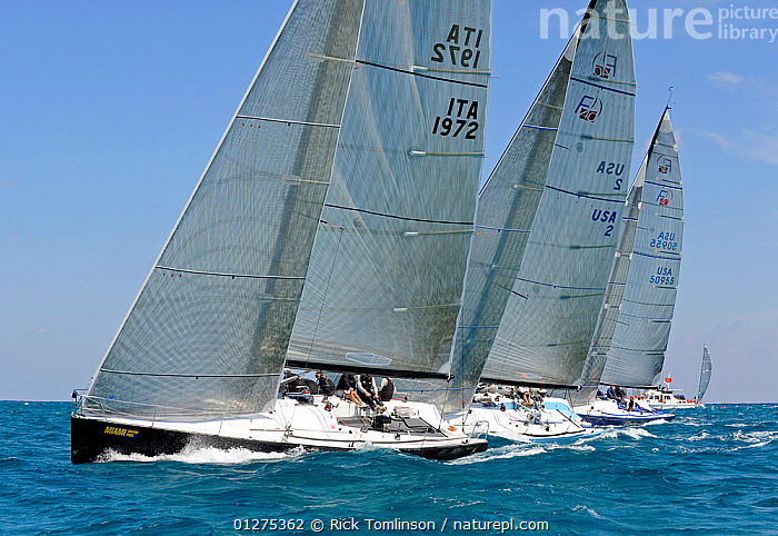 """Farr 40 """"Nerone"""" leading off the start line, Miami Grand Prix, Florida, USA. March 2010.  ,  FARRS,FLEETS,NORTH AMERICA,PROFILE,RACING,SAILING BOATS,STARTS,USA,YACHTS,BOATS,SAILING-BOATS,core collection xtwox  ,  Rick Tomlinson"""