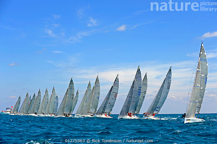 Melges 32 start line, Miami Grand Prix, Florida, USA. March 2010.  ,  FLEETS,MELGES ,NORTH AMERICA,RACING,SAILING BOATS,STARTS,USA,YACHTS,BOATS ,SAILING-BOATS,core collection xtwox  ,  Rick Tomlinson