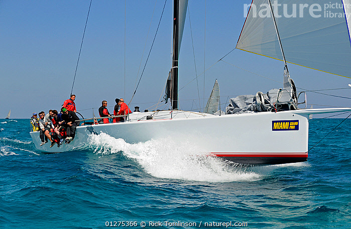 """IRC TP52 """"Decision"""" during the Miami Grand Prix, Florida, USA. March 2010.  ,  CHOPPY,NORTH AMERICA,PROFILE,RACES,SAILING BOATS,USA,YACHTS,BOATS  ,  Rick Tomlinson"""