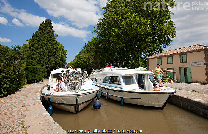 Two boats moored on the Canal Du Midi, Pechlairier, southern France. July 2009. Model and property released.  ,  CANALS,CRUISING,DOCKING,EUROPE,FRANCE,MANOEUVRES,MOORED,MOORING,MOTORBOATS,NARROW,PROCEDURES,TWO,BOATS  ,core collection xtwox  ,  Billy Black