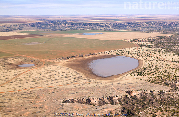 Aerial view of fields, temporary lake (playa) and arid plains, Llano Estacado, Texas, USA  ,  AERIALS,AGRICULTURE,LAKES,LANDSCAPES,NORTH AMERICA,USA,WATER,WETLANDS  ,  Doug Wechsler
