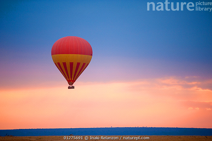 Flying hot air balloon in Masai Mara National Reserve, Kenya, Africa. August 2009  ,  AERIALS,AFRICA,AIRCRAFT,BALLOONS,DRAMATIC,EAST AFRICA,LANDSCAPES,LEISURE,NP,RESERVE,SKY,SUNSET,National Park  ,  Inaki Relanzon
