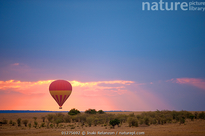 Flying hot air balloon in Masai Mara National Reserve, Kenya, Africa. August 2009  ,  AFRICA,AIRCRAFT,BALLOONS,DRAMATIC,EAST AFRICA,LANDSCAPES,NP,RESERVE,SKY,SUNSET,National Park  ,  Inaki Relanzon